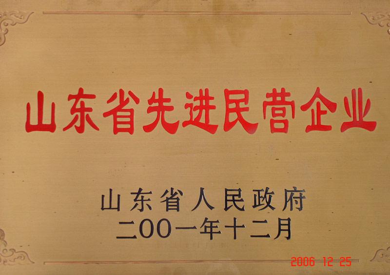 山东省先进民营企业