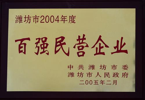 2005-04年度百强民营企业