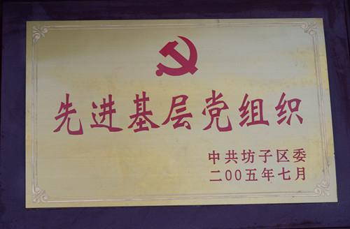 2005-先进基层党组织