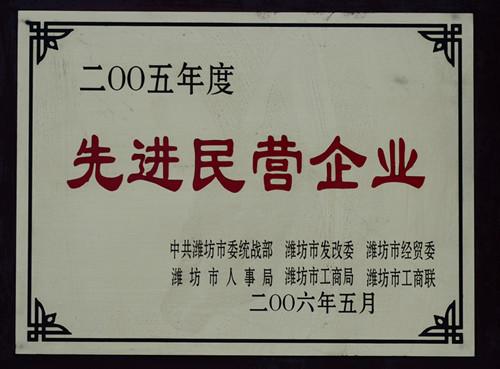 2006-05年度先进民营企业