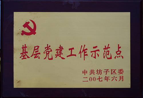 2007-基层党建工作示范点
