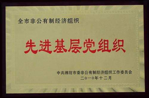 2010-全市非公有制经济组织先进基层党组织
