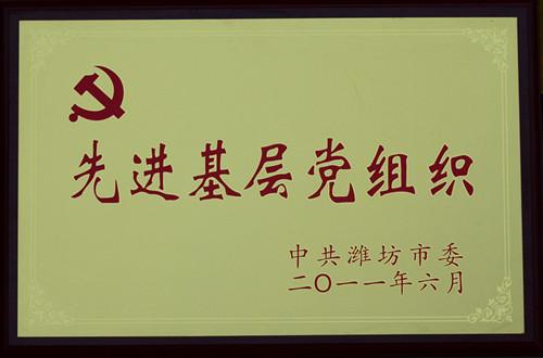 2011-先进基层党组织