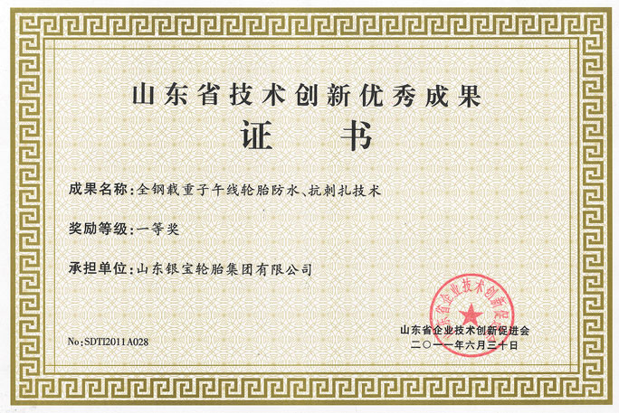 山东省技术创新优秀成果一等奖(企业)