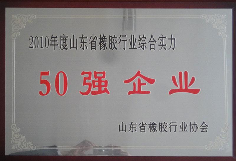 2010年山東省橡膠行業綜合實力50強