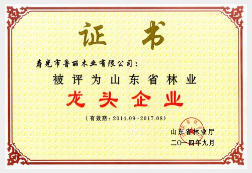 鲁丽木业有限公司被评为山东省林业龙头企业