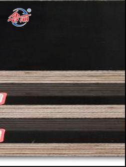 杂木建筑模板