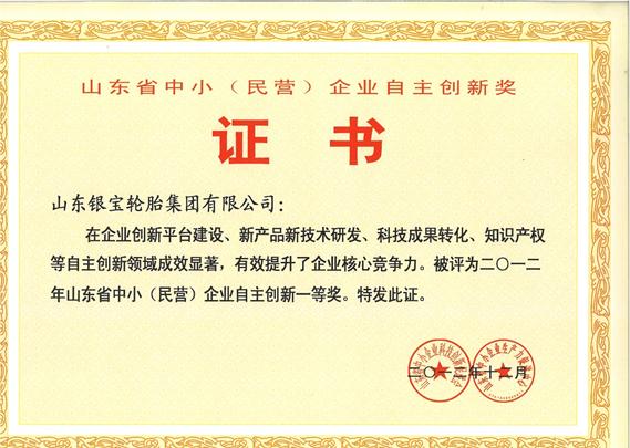 山东省中小(民营)企业自主创新一等奖