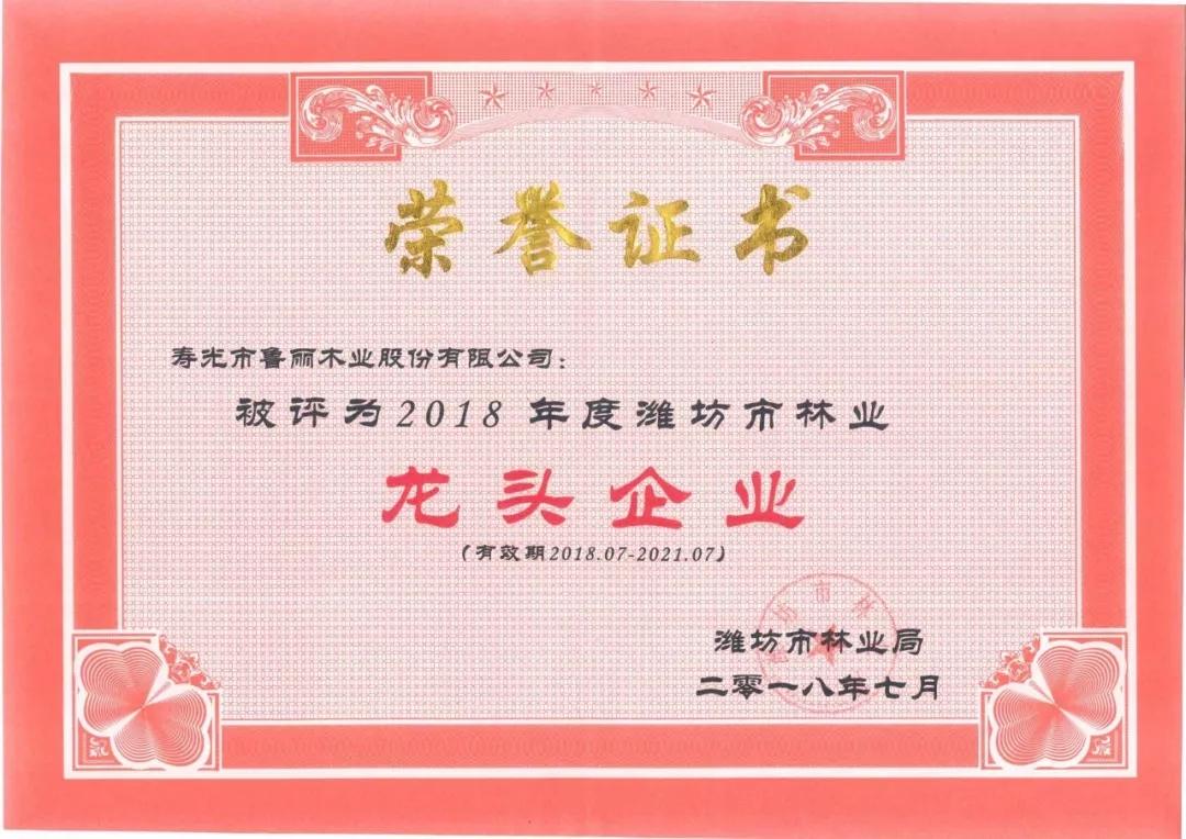 2018年度潍坊市林业龙头企业--鲁丽木业