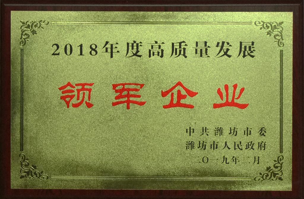 2018年度高质量发展领军企业