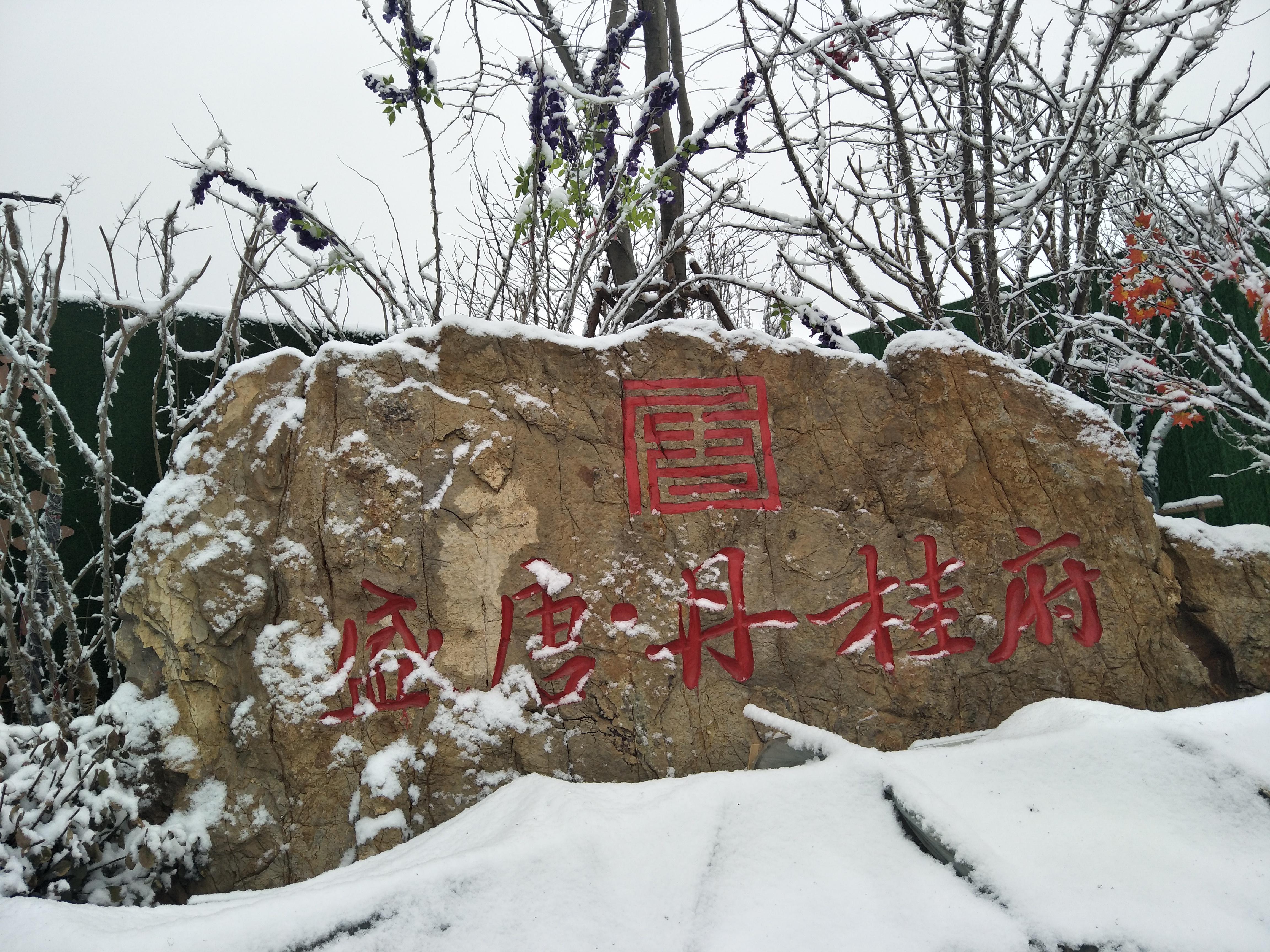 瑞雪下的盛唐丹桂府