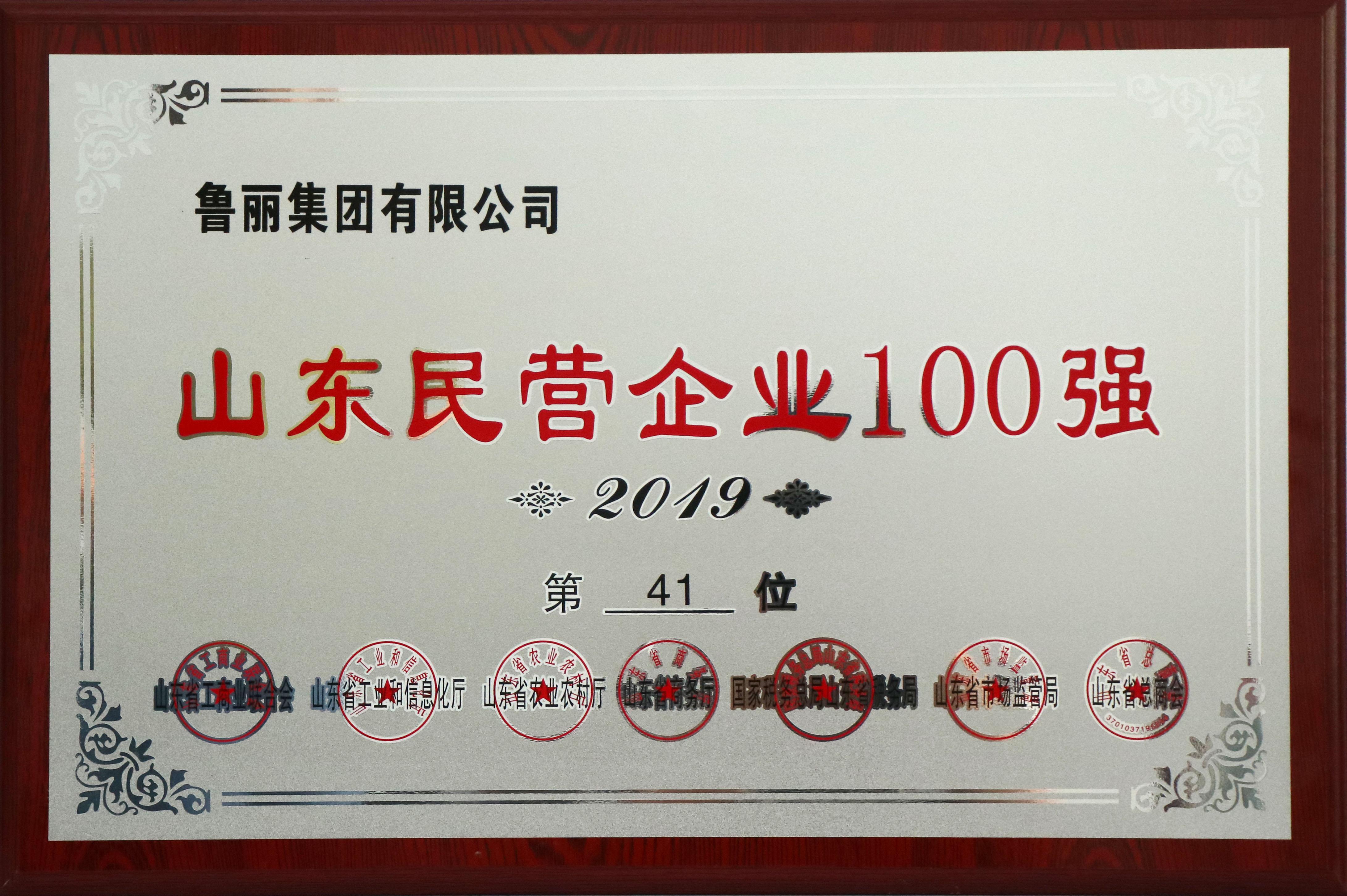 山东民营企业100强 41位