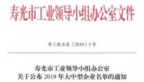 喜讯!魯麗集團有限公司上榜2019年寿光市特大型企业名单