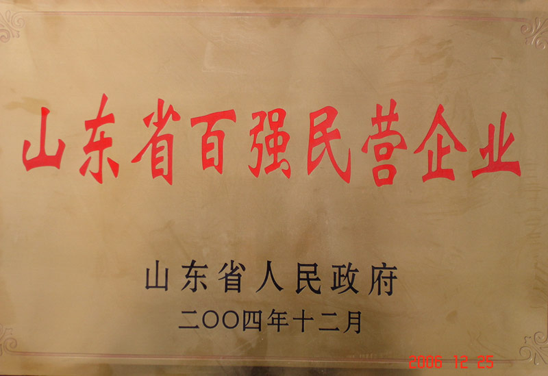山东省百强民营企业