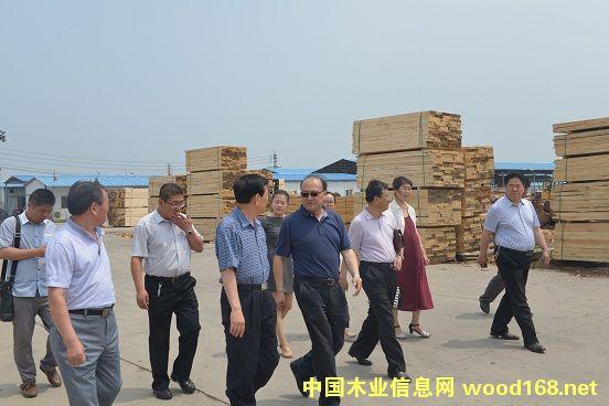 鲁丽集团董事长薛茂林一行到中航林业洽谈合作