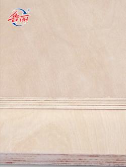 E1 multilayer board